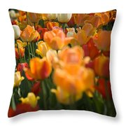 Row Of Colorful Tulips Throw Pillow