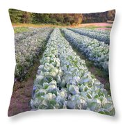 Row Three Throw Pillow