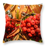 Rowan Berry Throw Pillow
