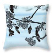 Rowan In Winter Throw Pillow