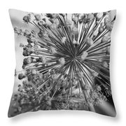 Rows Of Architecture  Throw Pillow