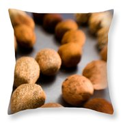 Rows Of Chocolate Truffles On Silver Throw Pillow
