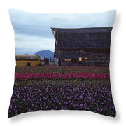 Rows Of Multi Colored Tulips In Field With Old Barn And Yellow B Throw Pillow