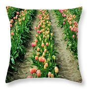 Rows Of Pink Throw Pillow