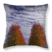 Rows Of Red Autumn Trees With Cirus Clouds Throw Pillow