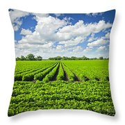 Rows Of Soy Plants In Field Throw Pillow by Elena Elisseeva