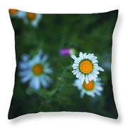 Roxy  Throw Pillow