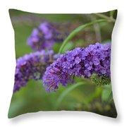 Royal Butterfly Bush Throw Pillow