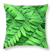 Royal Fern  Frond Detail Throw Pillow