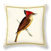 Royal Flycatcher Square Throw Pillow