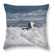 Royal Penguin Swimming In Surf Throw Pillow