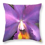 Royal Purple Cattleya Orchid Throw Pillow