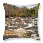 Royal River 0161 Throw Pillow