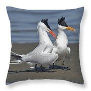Royal Terns Dancing Throw Pillow