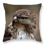 Rth After Lunch Throw Pillow