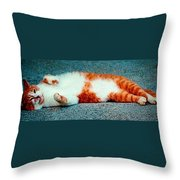 Rub My Belly Throw Pillow