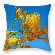 Rubber Rabbitbrush Off Hole-in-the-rock Road In Grand Staircase Escalante National Monument-utah Throw Pillow