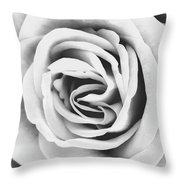 Rubellite Rose Bw Palm Springs Throw Pillow