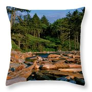 Ruby Bay North Pacific Ocean Throw Pillow