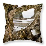 Ruby Beach Driftwood #3 Throw Pillow