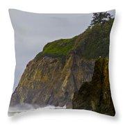 Ruby Beach Surf II Throw Pillow