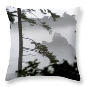 Ruby Beach Washington State Throw Pillow