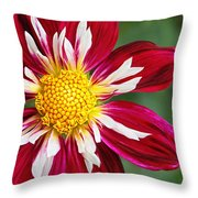 Ruby Glow Throw Pillow