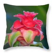 Ruby Greetings Throw Pillow