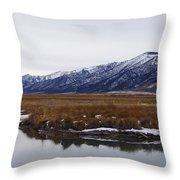 Ruby Marsh In Winter Throw Pillow