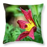 Ruby Riches Throw Pillow