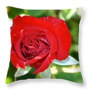 Ruby Rose Diamond Dust Throw Pillow