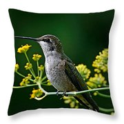 Ruby Throated Hummingbird 1 Throw Pillow