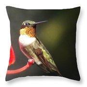 Ruby Throated Hummingbird 2 Throw Pillow
