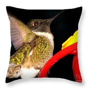 Ruby-throated Hummingbird Landing On Feeder Throw Pillow