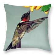 Ruby-throated Hummingbird Male At Flower Throw Pillow