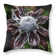 Rudbeckia First Frost Throw Pillow