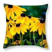 Rudbeckia Hirta Throw Pillow