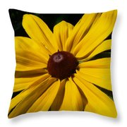 Rudbeckia Macro Throw Pillow