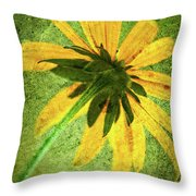 Rudbeckia On Cement Throw Pillow