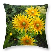 Rudbeckias With Green Centers Throw Pillow