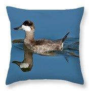 Ruddy Duck Drake Throw Pillow