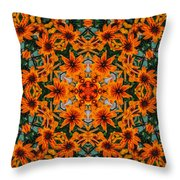 Rudi 2 Kaleidoscope Throw Pillow