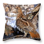 Ruffed Grouse On Alert Throw Pillow