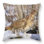 Ruffed Grouse On Snowy Log Throw Pillow