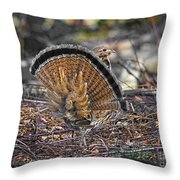 Ruffed Grouse Rear Strut Throw Pillow