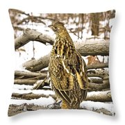 Ruffed Grouse Rear View Throw Pillow