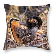 Ruffed Grouse Ruffed Up Throw Pillow