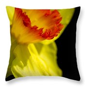Ruffled Cup Throw Pillow