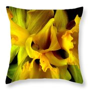 Ruffled Daffodils Throw Pillow