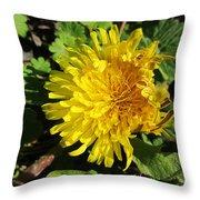 Ruffled Dandelion Throw Pillow
